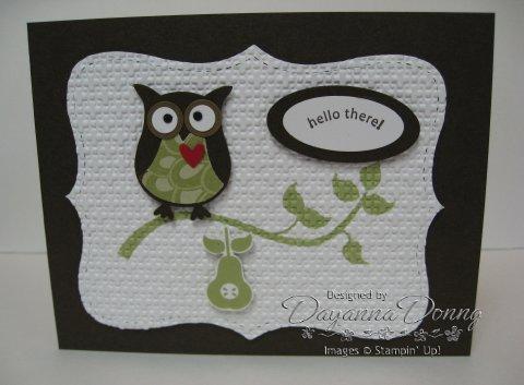 Espresso Owl